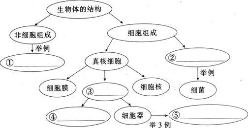 完成下列有关生物体结构的概念图.