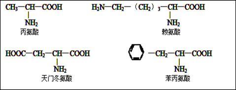 一>.下列是某化合物的结构简图,据图回答