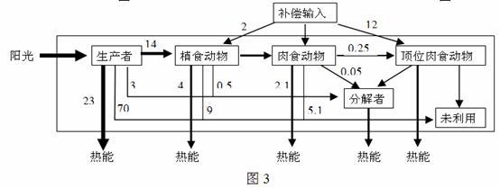 农业生态系统的结构