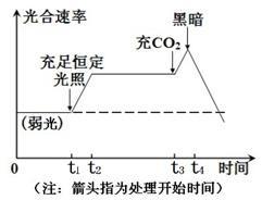 图 l 为某绿色植物细胞内部分代谢活动图解,其中① ⑤表示代谢过程,A