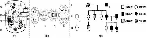 图1是高等动物细胞亚显微结构模式图