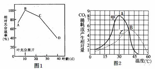 植物自身和环境因素都会影响光合作用速率 图1表示某种绿色植物 属