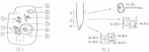 图l是高等动物细饱亚显微结构示意图